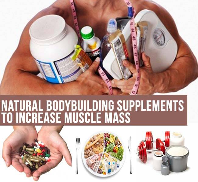 top natural body building supplements