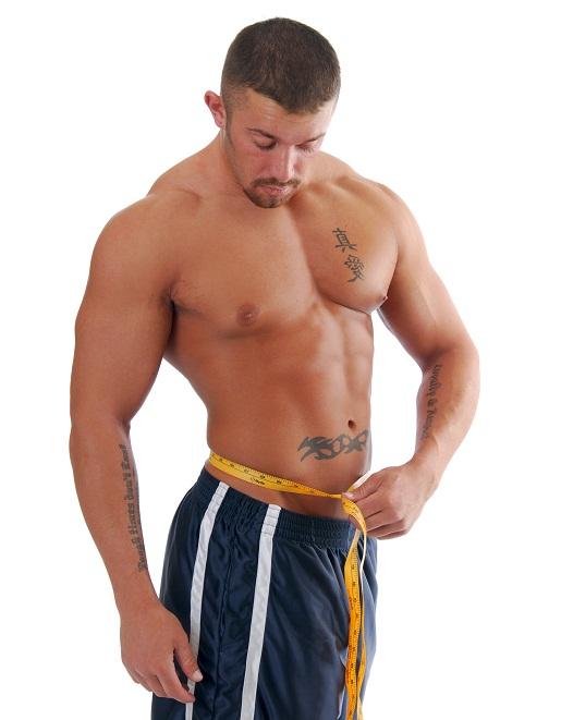muscle gain fat loss